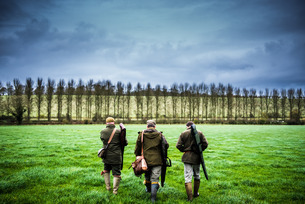 Three guns walking towards a drive, Wiltshireの写真素材 [FYI03777522]