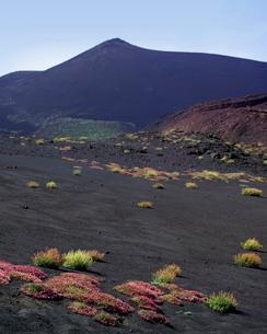 Mount Etna, Sicilyの写真素材 [FYI03778400]