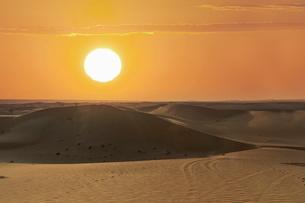 The desert near Liwa, Abu Dhabi, United Arab Emirates, Middle Eastの写真素材 [FYI03778536]