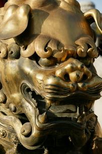 The Forbidden City, Beijing (Peking)の写真素材 [FYI03778817]