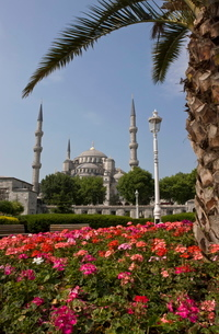Blue Mosque from Sultanahmet Square, Istanbul, Turkeyの写真素材 [FYI03778934]