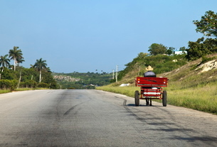 Man driving horse and cart on a wide deserted country road, Cubaの写真素材 [FYI03778961]