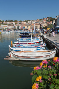 Traditional fishing boats moored in the harbour of the historic town of Cassis, Cote d'Azurの写真素材 [FYI03779226]