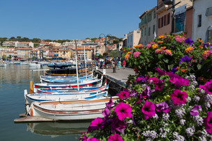 Traditional fishing boats moored in the harbour of the historic town of Cassis, Cote d'Azurの写真素材 [FYI03779227]