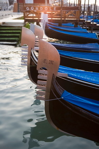 Gondolas floating in Saint Mark's Basin, Venice, Venetoの写真素材 [FYI03779468]