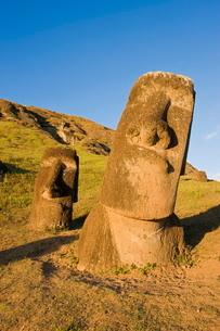 Giant monolithic stone Moai statues at Rano Raraku, Rapa Nui (Easter Island)の写真素材 [FYI03779706]