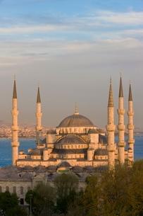 Elevated view of the Blue Mosque (Sultan Ahmet) in Sultanahmet, overlooking the Bosphorus, Istanbul,の写真素材 [FYI03779838]