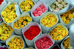 Flowers for sale, Delhiの写真素材 [FYI03780006]