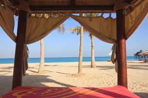 Four poster sunlounger on Jumeirah Beach and the Burj Al Arab Hotel, Jumeirah Beach, Dubai, United Aの写真素材 [FYI03780259]