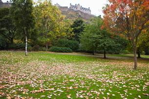Princes Street Gardens and Edinburgh Castle, Edinburgh, Lothian, Scotlandの写真素材 [FYI03780275]