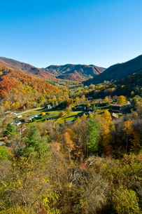 View over valley with colourful foliage in the Indian summer, Great Smoky Mountains National Park, Tの写真素材 [FYI03780405]