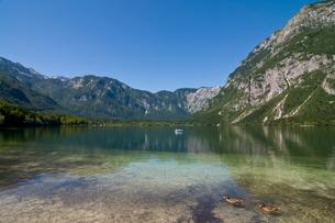Glacial mountain lake Bohinj, Sloveniaの写真素材 [FYI03780441]
