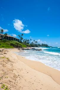 Sandy beach on Kapaa Beach Park on the island of Kauai, Hawaiiの写真素材 [FYI03780934]