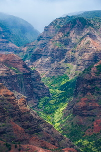 View over the Waimea Canyon, Kauai, Hawaiiの写真素材 [FYI03780963]