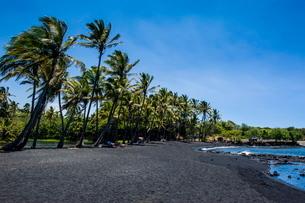 Punaluu Black Sand Beach on Big Island, Hawaiiの写真素材 [FYI03780985]