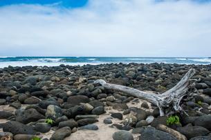Huge pebbles on the Halawa beach in Halawa Bay on the island of Molokai, Hawaiiの写真素材 [FYI03781021]