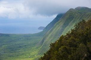 Kalaupapa overlook on the island of Molokai , Hawaiiの写真素材 [FYI03781022]