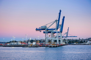 Wharf in the harbour of Auckland, North Island, New Zealandの写真素材 [FYI03781087]