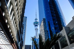 Downtown Auckland with its high rise buildings, Auckland, North Island, New Zealandの写真素材 [FYI03781089]