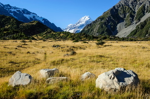Mount Cook, the highest mountain in New Zealand, South Island, New Zealandの写真素材 [FYI03781135]