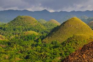 Chocolate Hills, Bohol, Philippines, Southeast Asiaの写真素材 [FYI03781262]