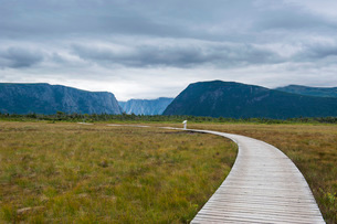 Walkway along Jerrys Pond in the Gros Morne National Park, Newfoundlandの写真素材 [FYI03781471]