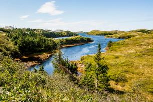 Beautiful pond near Port aux Basques, Newfoundlandの写真素材 [FYI03781482]