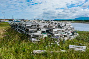 Lobster fishing traps in Port au Choix, Newfoundlandの写真素材 [FYI03781485]