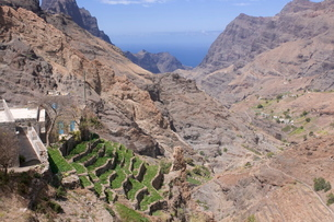 Mountain landscape of the island of San Antao with agricultural terraces, Cape Verde Islandsの写真素材 [FYI03781487]