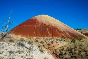 Multicoloured strata hill in the Painted Hills unit in the John Day Fossil Beds National Monument, Oの写真素材 [FYI03781583]