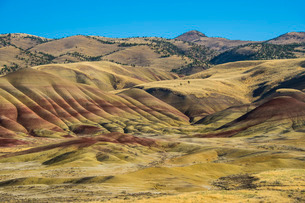 Multicoloured strata in the Painted Hills unit in the John Day Fossil Beds National Monument, Oregonの写真素材 [FYI03781584]