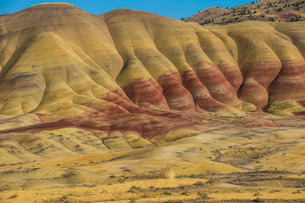 Multicoloured strata in the Painted Hills unit in the John Day Fossil Beds National Monument, Oregonの写真素材 [FYI03781585]
