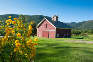 Little farm in the mountains in Dorset, Vermont, New England'の写真素材 [FYI03781745]