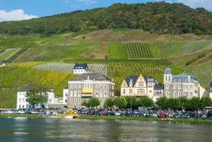 Bernkastel-Kues, Moselle Valley, Rhineland-Palatinateの写真素材 [FYI03781791]