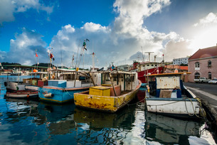 Fishing boats in the harbour of St. Georges, capital of Grenada, Windward Islands, Caribbeanの写真素材 [FYI03781852]