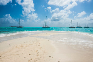 White sand bank in the turquoise waters of the Tobago Cays, The Grenadines, St. Vincent and the Grenの写真素材 [FYI03781878]