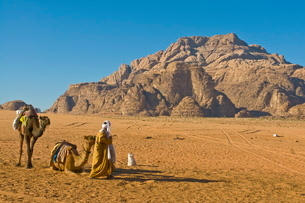 Bedouin with his camels in the stunning scenery of Wadi Rum, Jordan, Middle Eastの写真素材 [FYI03782011]