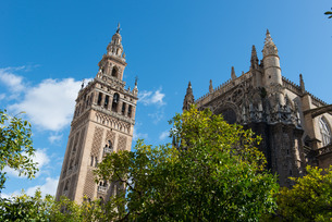 Sevilla Cathedral and Giralda, Seville, Andaluciaの写真素材 [FYI03782106]