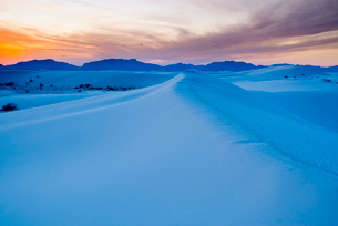 White Sands National Monument, New Mexico'の写真素材 [FYI03782181]