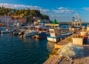 Fishing nets and fishing boats, Old Town Harbour, Piran, Primorska, Slovenian Istria, Sloveniaの写真素材 [FYI03782262]