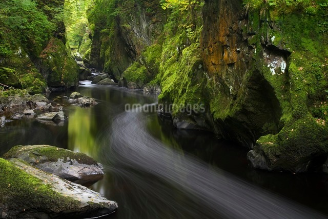 Fairy Glen in autumn, Betwys-y-Coed, Conwy Valley, Walesの写真素材 [FYI03782379]