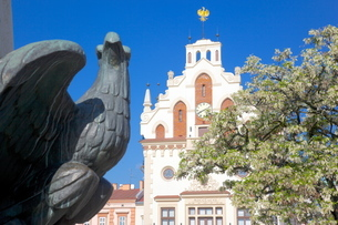 City Hall, Market Square, Old Town, Rzeszow, Polandの写真素材 [FYI03782524]