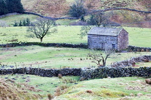 Field barn and dry stone walls in Garsdale, Yorkshire Dales, Cumbriaの写真素材 [FYI03782957]