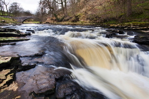 StainforthBridge and Stainforth Force on the River Ribble, Yorkshire Dales, Yorkshireの写真素材 [FYI03782962]