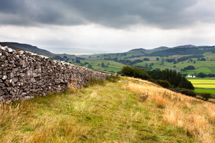 Dry stone wall and Public Footpath in Crummack Dale, Yorkshireの写真素材 [FYI03782989]