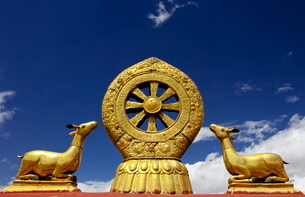 A golden dharma wheel and deer sculptures on the sacred  Jokhang Temple roof, Barkhor Square, Lhasa,の写真素材 [FYI03783045]
