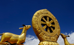 Golden Wheel of Dharma and deer sculptures on the sacred Jokhang Temple roof, Barkhor Square, Lhasa,の写真素材 [FYI03783047]