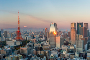 Elevated evening view of the city skyline and iconic Tokyo Tower, Tokyo, Japan, Asiaの写真素材 [FYI03783425]