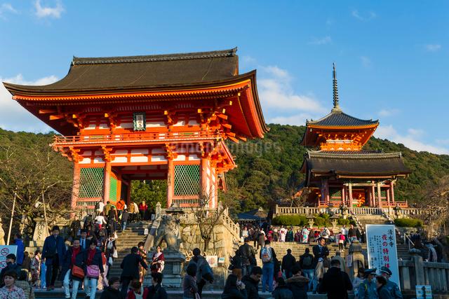 Kiyomizu-dera temple, UNESCO World Heritage Site, Kyoto, Honshu, Japan, Asiaの写真素材 [FYI03783439]