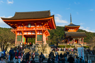 Kiyomizu-dera temple, UNESCO World Heritage Site, Kyoto, Honshu, Japan, Asiaの写真素材 [FYI03783439]
